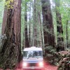 Photo of the Day – RV in the Redwoods