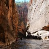 Photo of the Day – The Narrows in Zion National Park