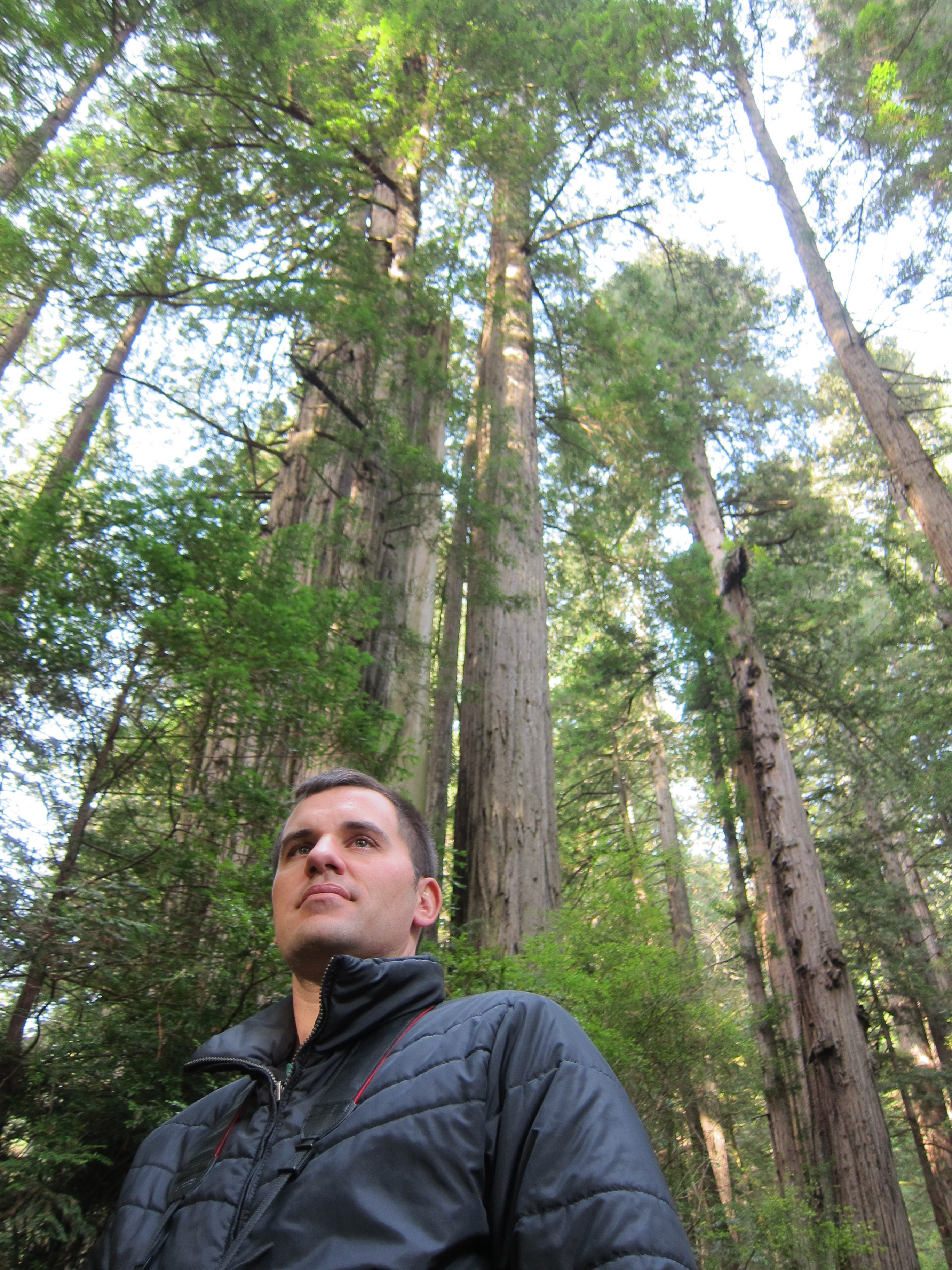 Kenny in the Redwood Forest